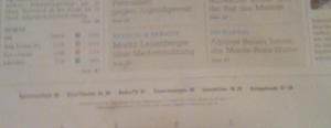 Detail: Missglücktes Inhaltsverzeichnis am Seitenfuss...